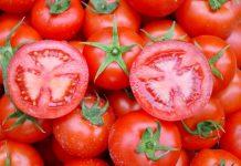 en kırmızı domates resimleri