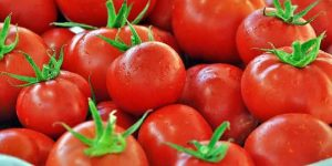 kırmızı-domatesler-300x150 Saksıda Domates Yetiştirmek, Ne yapılmalıdır?