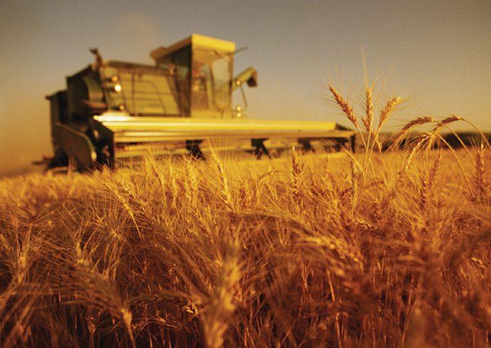 devlet-tesvik Az Sermaye ile Tarımda Yatırımın 5 Yolu