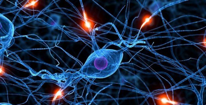 epilepsi-sara-hastaligi-nedir-nasil-tedavi-edilir-2 Epilepsi (Sara Hastalığı) Nedir? Nasıl Tedavi Edilir?
