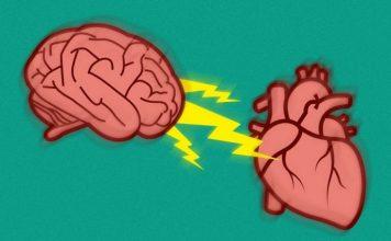 Stres Nedir Ve Stres Kalp Hastalıklarını Nasıl Etkiler?