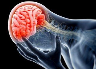 Beynimizdeki Alarm Sistemi Bozulursa: Panik Atak- Panik Bozukluğu