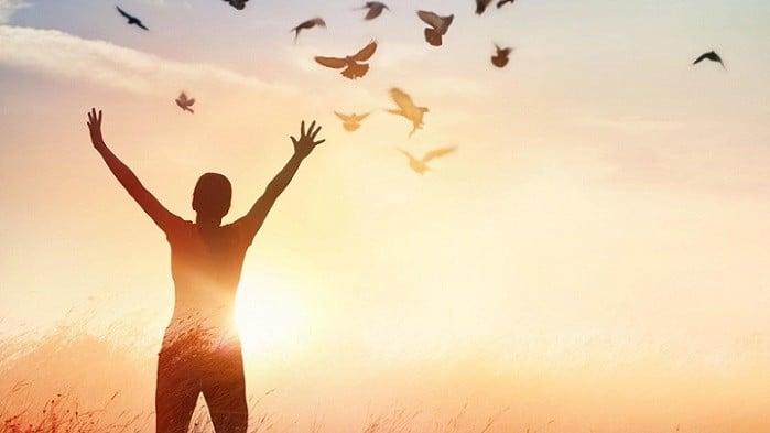 affetme-ne-degildir Affetmek Ne Değildir?