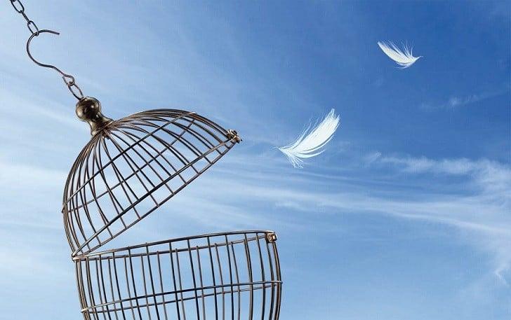 affetmek-ne-degildir-2 Affetmek Ne Değildir?