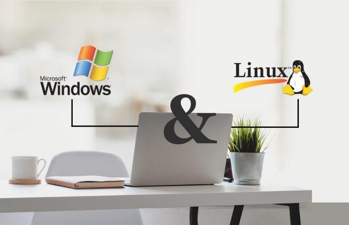 Linux Hosting mi Windows Hosting mi?