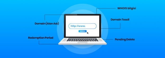 domain nedir